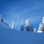 2011-01-23_stockli_14