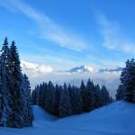 2011-01-23_stockli_17
