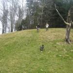 2011-03-27_groot_11