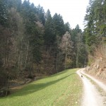 2011-03-27_groot_3