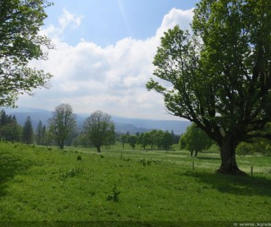 20140530 Chasseral 10400