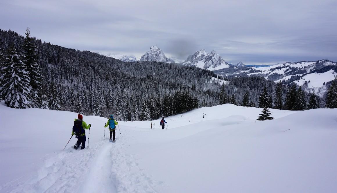 Butziflüe – Schneeschuhwanderung