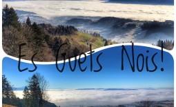 Bachtel – Neujahrspaziergang