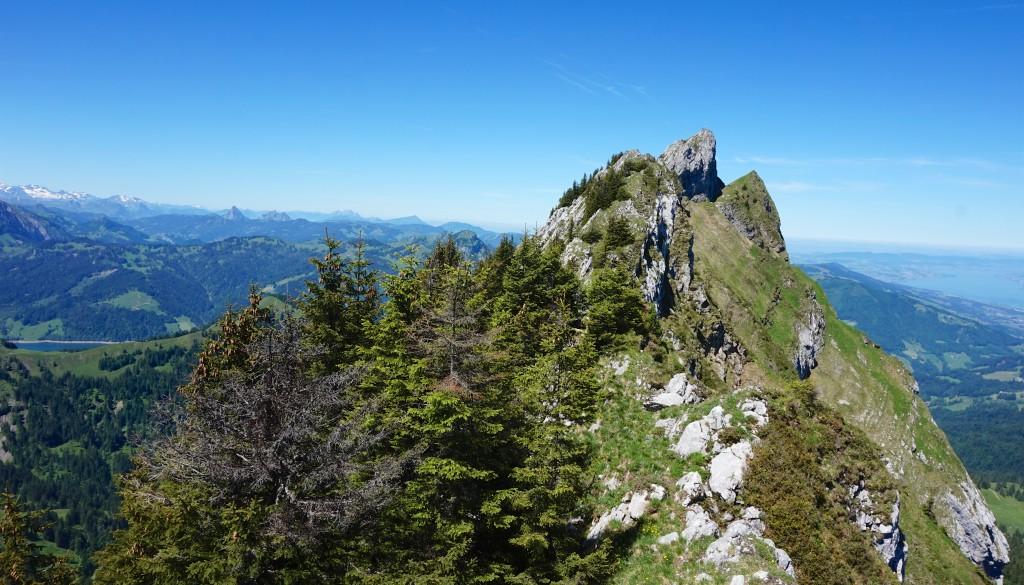 Chöpfenberg – Wanderung