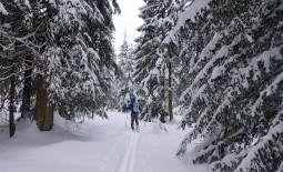 Laucherenstöckli – Skitour